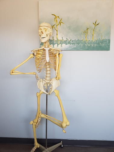 skeleton standing with leg up and hand on hip