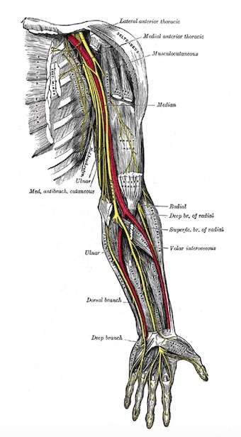 physiotherapy oakville thoracic outlet syndrome